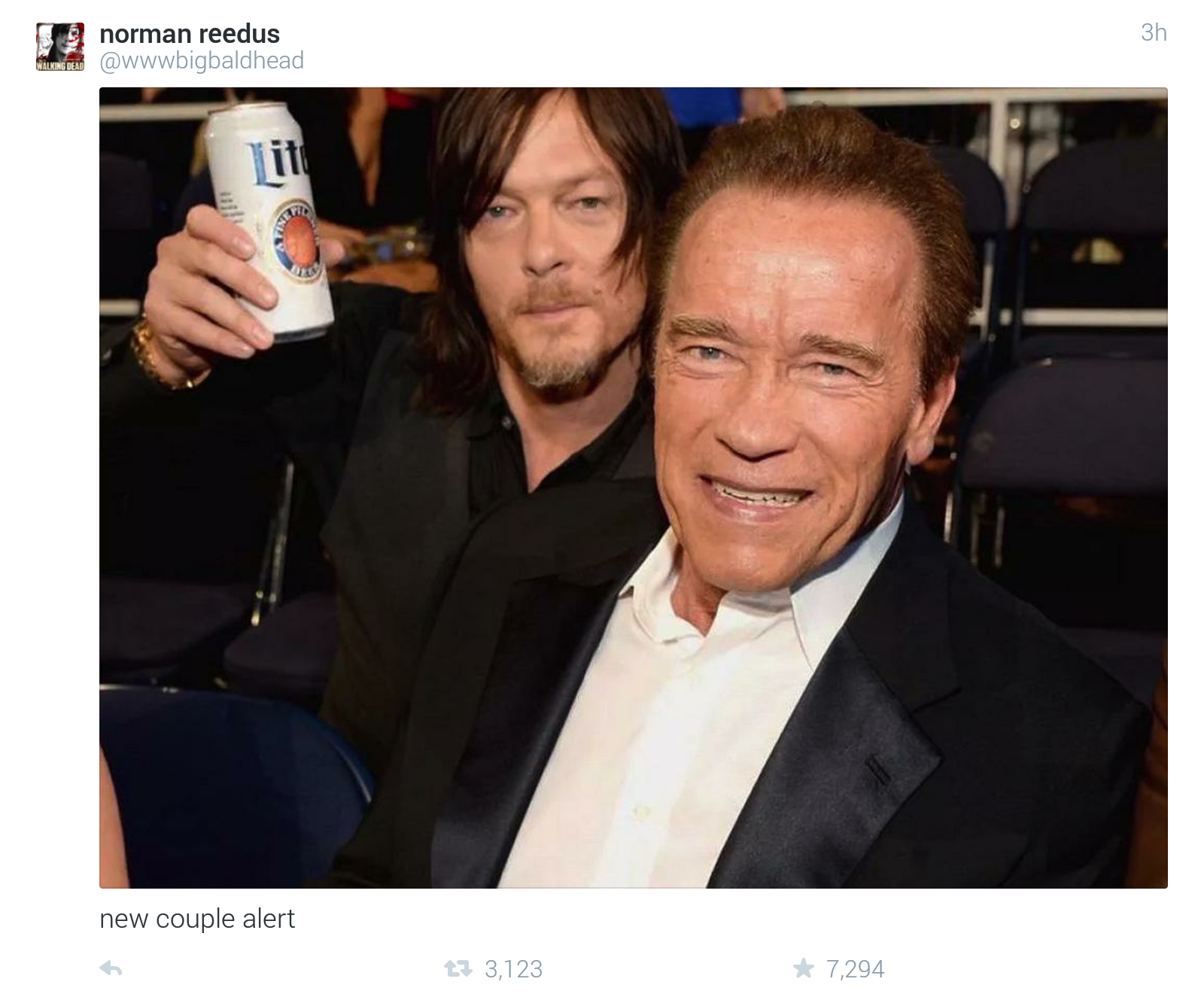 Norman Reedus Tweets About Arnold Schwarzenegger From breaking news and entertainment to sports and politics, get the full walking dead's norman reedus reveals which character he'd like to play if he wasn't cast as daryl dixon. norman reedus tweets about arnold