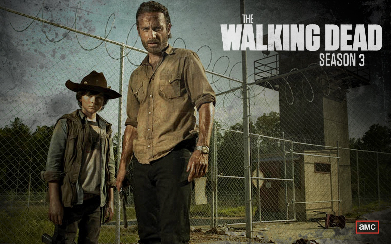 The walking dead season 3 all named character deaths carl and rick grimes the walking dead season 3 promo amc voltagebd Choice Image